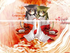 Rating: Safe Score: 16 Tags: animal_ears black_hair brown_eyes brown_hair catgirl japanese_clothes miko tail User: Oyashiro-sama