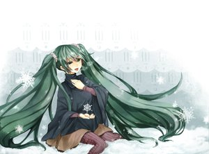 Rating: Safe Score: 17 Tags: aqua_eyes aqua_hair hatsune_miku snow twintails vocaloid User: HawthorneKitty