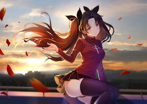 Rating: Safe Score: 130 Tags: andy_h brown_hair building city fate_(series) fate/stay_night long_hair panties petals purple_eyes skirt sunset thighhighs tohsaka_rin underwear User: RyuZU