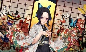 Rating: Safe Score: 25 Tags: black_hair butterfly japanese_clothes katana kimetsu_no_yaiba kimono kochou_shinobu purple_eyes short_hair sword weapon yomena User: sadodere-chan