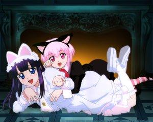 Rating: Safe Score: 22 Tags: 2girls aizawa_masahiro animal_ears artemis catgirl dress hazuki pink_eyes pink_hair tsukuyomi_moon_phase vampire User: Oyashiro-sama