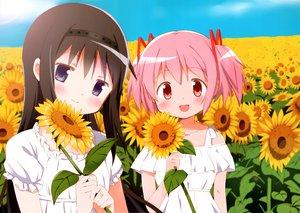 Rating: Safe Score: 21 Tags: 2girls akemi_homura flowers kaname_madoka mahou_shoujo_madoka_magica scan sunflower tagme_(artist) User: sadodere-chan