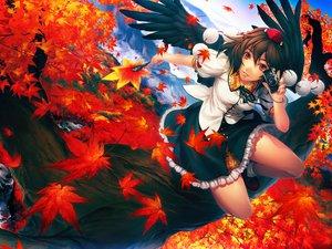 Rating: Safe Score: 141 Tags: autumn camera shameimaru_aya simosi touhou wings User: naikoto