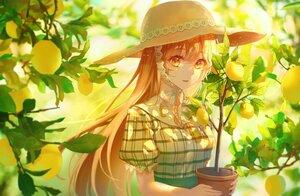 Rating: Safe Score: 36 Tags: blonde_hair close food fruit hat leaves lium long_hair orange_eyes original tree User: BattlequeenYume