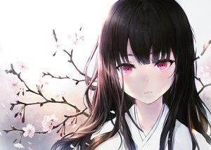 Rating: Safe Score: 149 Tags: black_hair cherry_blossoms close flowers haori_iori japanese_clothes kimono long_hair original pink_eyes User: Dreista