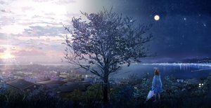 Rating: Safe Score: 94 Tags: ao_(aohari) building city clouds landscape moon night original scenic short_hair sky stars sunset tree umbrella User: FormX
