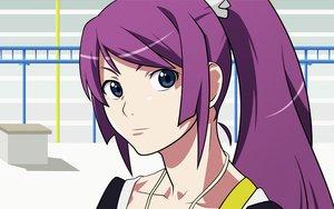 Rating: Safe Score: 11 Tags: bakemonogatari monogatari_(series) ponytail senjougahara_hitagi vector User: HawthorneKitty