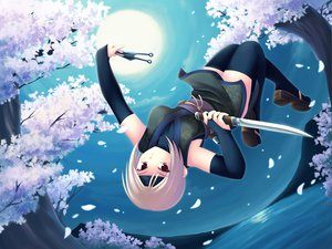 Rating: Safe Score: 78 Tags: blonde_hair maxwindy moon night ninja petals red_eyes short_hair thighhighs tree weapon User: opai