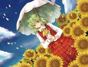 Rating: Safe Score: 39 Tags: dress flowers green_hair kazami_yuuka michii_yuuki red_eyes short_hair sky sunflower touhou umbrella User: w7382001