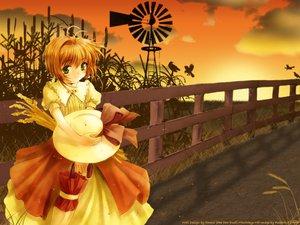 Rating: Safe Score: 9 Tags: card_captor_sakura kinomoto_sakura User: Oyashiro-sama