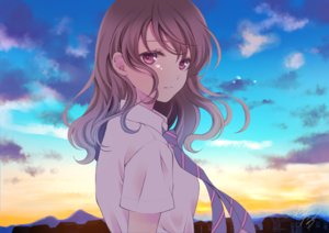 Rating: Safe Score: 52 Tags: brown_hair building clouds original pink_eyes school_uniform sheepd signed sky sunset tears tie User: BattlequeenYume