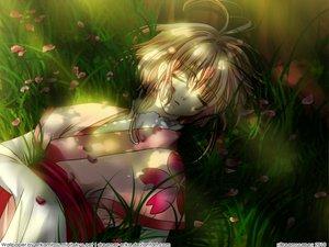 Rating: Safe Score: 20 Tags: blonde_hair flowers grass japanese_clothes kimono petals sakura_(tsubasa) short_hair sleeping tsubasa_reservoir_chronicle User: Maboroshi