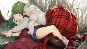 Rating: Safe Score: 88 Tags: 2girls asutora blush breasts grass green_eyes green_hair kazami_yuuka short_hair shorts touhou wriggle_nightbug User: RyuZU