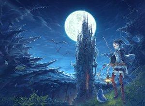 Rating: Safe Score: 142 Tags: animal bird black_hair boots cape hisakata_souji landscape moon night original red_eyes scenic short_hair tagme thighhighs User: w7382001