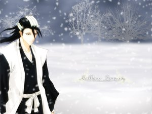 Rating: Safe Score: 5 Tags: all_male bleach kuchiki_byakuya male User: Oyashiro-sama