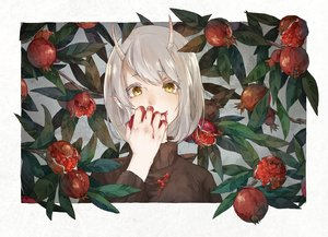 Rating: Safe Score: 34 Tags: aliasing food fruit gray_hair horns kamura_gimi leaves original pointed_ears short_hair yellow_eyes User: otaku_emmy
