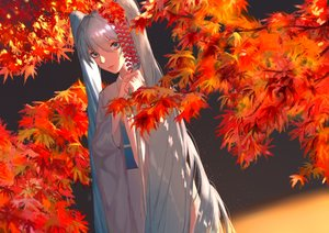 Rating: Safe Score: 15 Tags: 18052 aqua_eyes autumn blue_hair hatsune_miku japanese_clothes kimono leaves long_hair vocaloid User: FormX