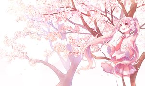 Rating: Safe Score: 62 Tags: cherry_blossoms flowers hatsune_miku long_hair pink_eyes pink_hair polychromatic sakura_miku sentaro207 tie tree twintails vocaloid User: FormX