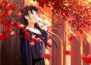 Rating: Safe Score: 53 Tags: autumn brown_eyes brown_hair crying leaves long_hair original paper school_uniform skirt tears tie tree urata_asao User: RyuZU