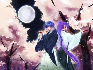 Rating: Safe Score: 9 Tags: all_male flute instrument kaito kamui_gakupo katana male moon sword tree vocaloid weapon User: HawthorneKitty