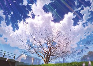 Rating: Safe Score: 46 Tags: building clouds grass mocha_(cotton) original petals scenic signed sky tree User: RyuZU