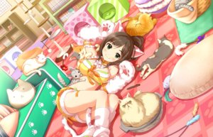 Rating: Safe Score: 60 Tags: animal animal_ears annin_doufu book brown_hair cat catgirl cat_smile green_eyes idolmaster idolmaster_cinderella_girls idolmaster_cinderella_girls_starlight_stage long_hair maekawa_miku ponytail shorts tail User: luckyluna