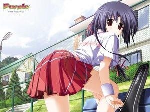 Rating: Safe Score: 30 Tags: akiirorenka nanjou_ibuki purple_software skirt sport tennis User: Oyashiro-sama