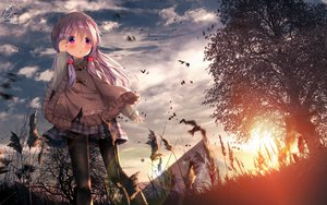 Rating: Safe Score: 73 Tags: blush cape chinomaron clouds grass hat long_hair original pantyhose purple_eyes purple_hair signed skirt sky sunset tree User: sadodere-chan