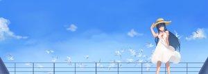 Rating: Safe Score: 55 Tags: animal anthropomorphism bird black_hair dress dualscreen hat long_hair nipples quincy sky summer_dress third-party_edit yuuuuuuuuuuuuka zhanjian_shaonu User: Dummy