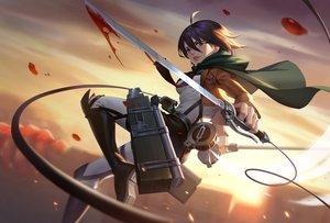 Rating: Safe Score: 45 Tags: blood blue_eyes boots brown_hair cape jun_luo mikasa_ackerman petals shingeki_no_kyojin short_hair sword weapon User: RyuZU