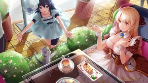 Rating: Safe Score: 36 Tags: animal black_eyes black_hair blonde_hair braids breasts cake cat cleavage collar crossover dress drink flowers food forever_7th_capital fruit hat hmniao orange_eyes reflection shiina_mayuri short_hair steins;gate strawberry wristwear User: RyuZU