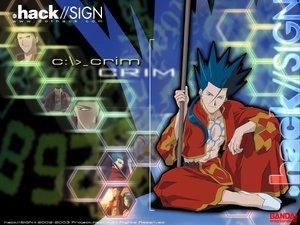 Rating: Safe Score: 1 Tags: .hack// .hack//sign crim User: Oyashiro-sama