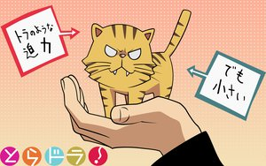 Rating: Safe Score: 35 Tags: animal palmtop_tiger tiger toradora User: 秀悟