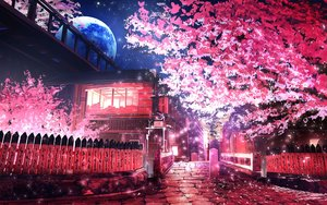 Rating: Safe Score: 135 Tags: aliasing building cherry_blossoms flowers moon night nobody original petals polychromatic scenic smile_(qd4nsvik) tree User: mattiasc02