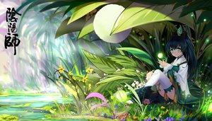 Rating: Safe Score: 84 Tags: animal bba_biao black_hair blush flowers frog grass green_eyes long_hair water User: RyuZU