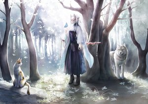 Rating: Safe Score: 77 Tags: animal boots butterfly cat forest japanese_clothes katana long_hair mask original sword tagme_(artist) tree weapon white_hair wolf User: luckyluna