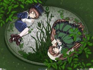 Rating: Safe Score: 23 Tags: 2girls brown_hair hat rozen_maiden sleeping souseiseki suiseiseki twins User: Oyashiro-sama