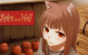 Rating: Safe Score: 49 Tags: animal_ears apple brown_hair food fruit horo long_hair ookami_to_koushinryou red_eyes wolfgirl User: korokun