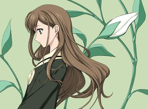 Rating: Safe Score: 12 Tags: brown_hair gray_eyes maria-sama_ga_miteru toudou_shimako User: 秀悟