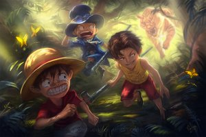 Rating: Safe Score: 47 Tags: animal bandaid black_hair blonde_hair butterfly forest goggles hat monkey_d_luffy one_piece portgas_d_ace richy_truong sabo scarf short_hair signed tears tiger tree watermark User: C4R10Z123GT