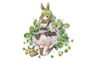 Rating: Safe Score: 74 Tags: albinoraccoon animal animal_ears bicolored_eyes blush bow bunny_ears bunnygirl dress food fruit goth-loli green_hair lolita_fashion original rabbit short_hair thighhighs white User: BattlequeenYume
