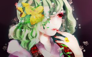 Rating: Safe Score: 49 Tags: kazami_yuuka realistic rogi touhou User: luckyluna