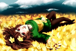 Rating: Safe Score: 4 Tags: brown_hair chara_(undertale) flowers pantyhose red_eyes short_hair signed tagme_(artist) undertale waifu2x User: luckyluna