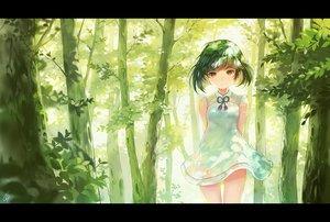 Rating: Safe Score: 120 Tags: dress forest green_hair orange_eyes original ribbons scenic sibyl signed tree User: luckyluna