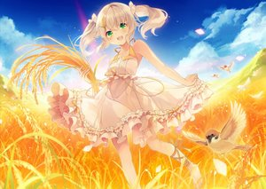 Rating: Safe Score: 77 Tags: aliasing animal anthropomorphism barefoot bird blonde_hair dress green_eyes ribbons shinia summer summer_dress tagme_(character) twintails yellow User: gnarf1975