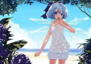 Rating: Safe Score: 152 Tags: beach blue_eyes blue_hair bow cirno dress fairy flowers hamachi_hazuki see_through touhou tree wet wings User: FormX
