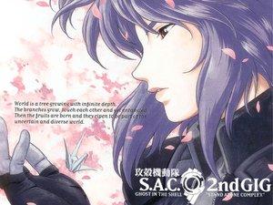 Rating: Safe Score: 18 Tags: ghost_in_the_shell kusanagi_motoko petals User: Oyashiro-sama