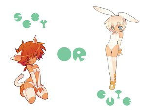 Rating: Safe Score: 39 Tags: animal_ears blade_(lovewn) bunnygirl catgirl collar green_eyes red_eyes red_hair tagme tail thighhighs User: Oyashiro-sama