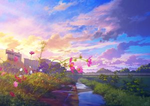 Rating: Safe Score: 10 Tags: building clouds flowers grass mocha_(cotton) nobody original scenic signed sky sunset tree water User: mattiasc02