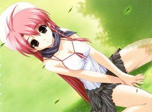 Rating: Safe Score: 125 Tags: boy_meets_girl breasts brown_eyes cleavage grass hat petals pink_hair shintaro skirt tsubasa_miu User: Oyashiro-sama